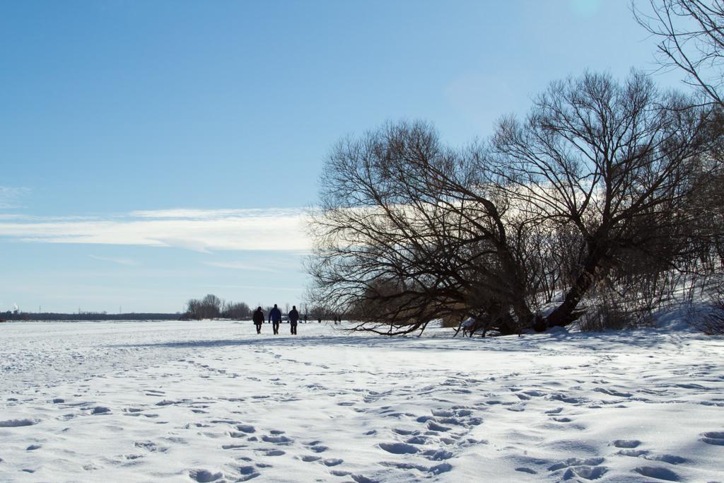 Fleuve Saint Laurent en hiver