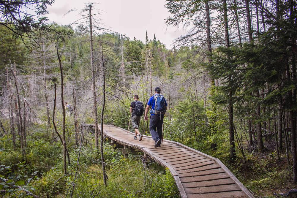 Début randonnée Algonquin Peak