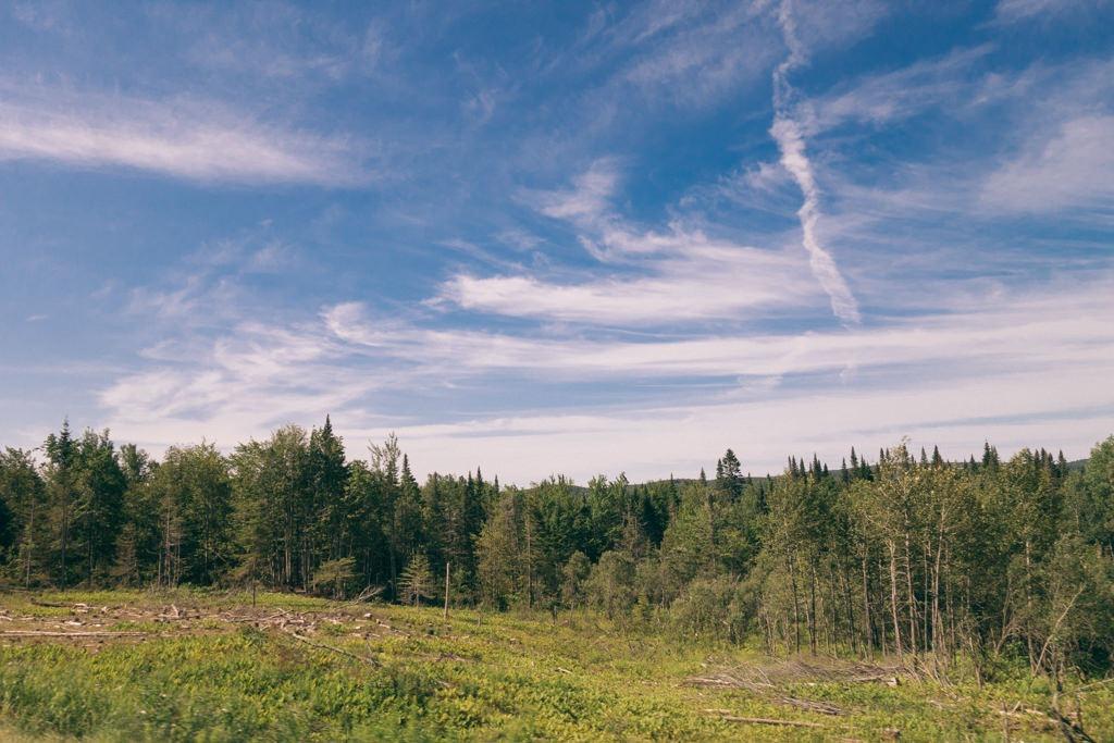 Le Maine et ses paysages durant l'été.